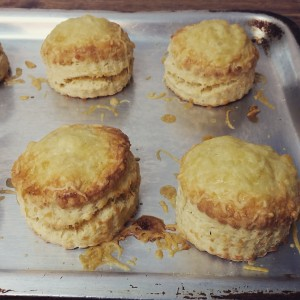 Cheddar Scones Hot Out of Oven